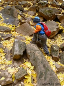 Toddler hiking in the Fall.