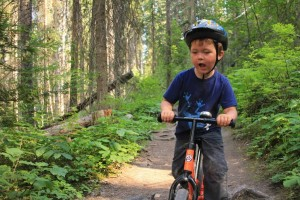 Adventure Tyke Photo of the Week – Cruising The Forest