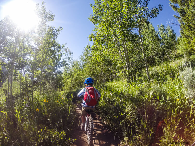 Cache Creek Trails in Jackson, Wyoming