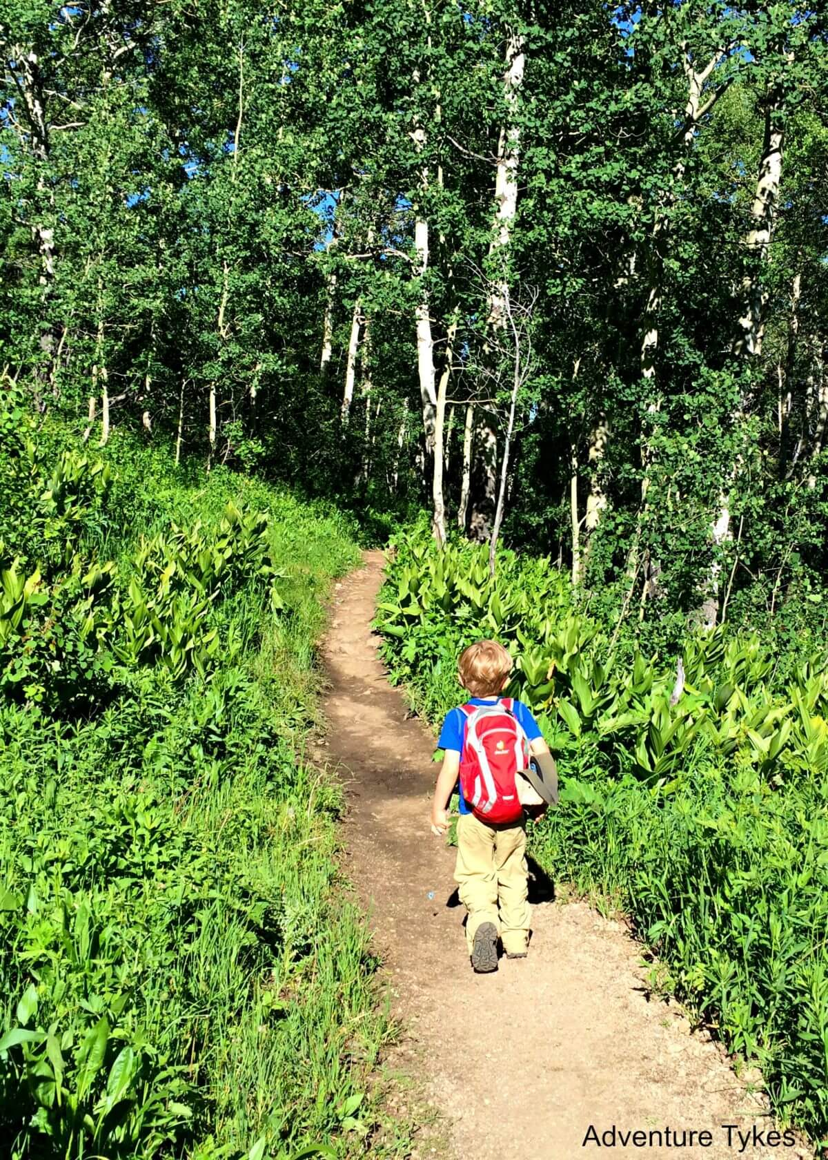 Kid hiking