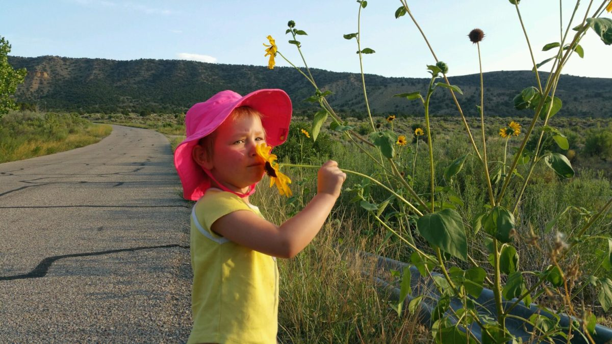 toddler smelling a sunflower