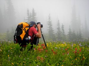 Photographing in Fog - Glacier National Park
